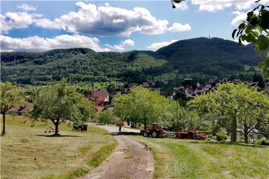 Hinaus ins Grüne: Rundwanderung zu Selchental, Pfullinger Berg und Barmkapf